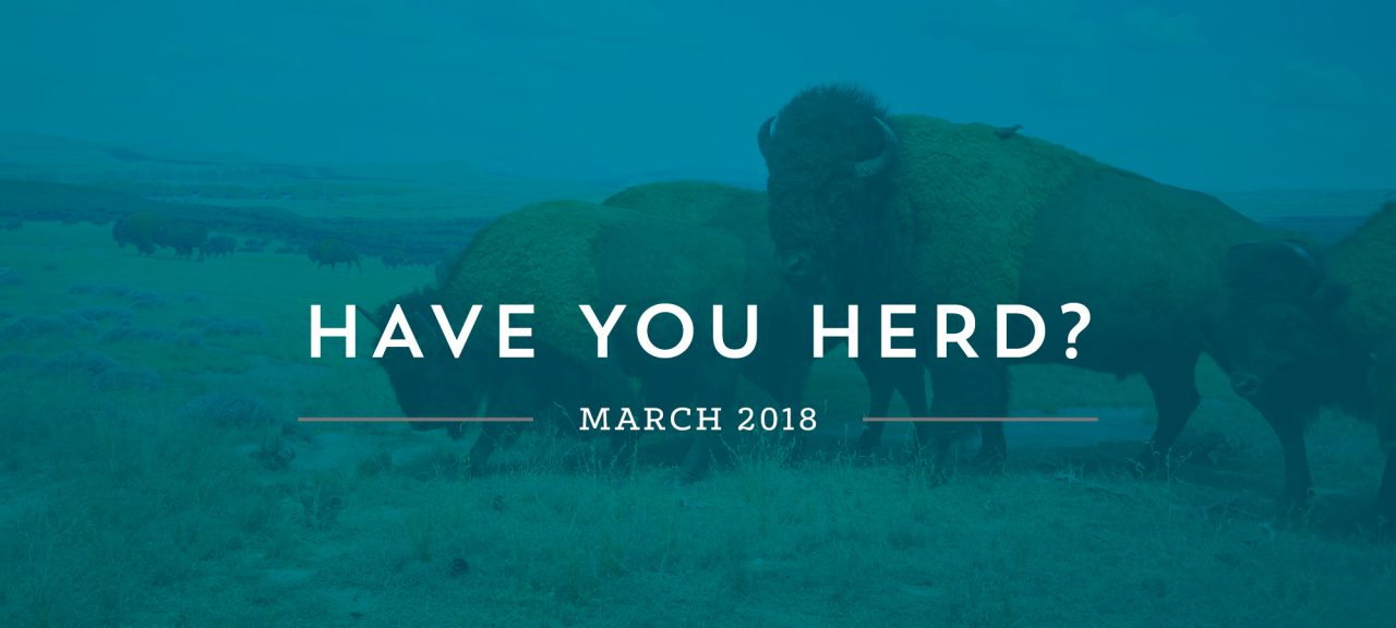 March Have You Herd Blog Header