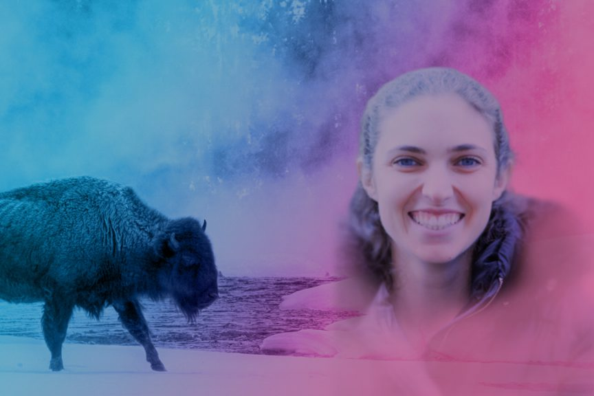 Herd Highlight | Buffalo Agency | Associate Kelly Okun